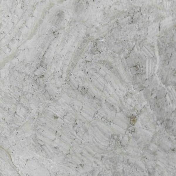 Eutophia Limestone